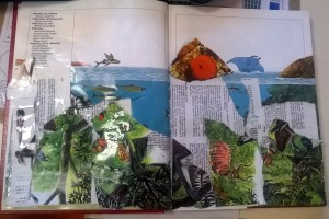 Livre artiste15