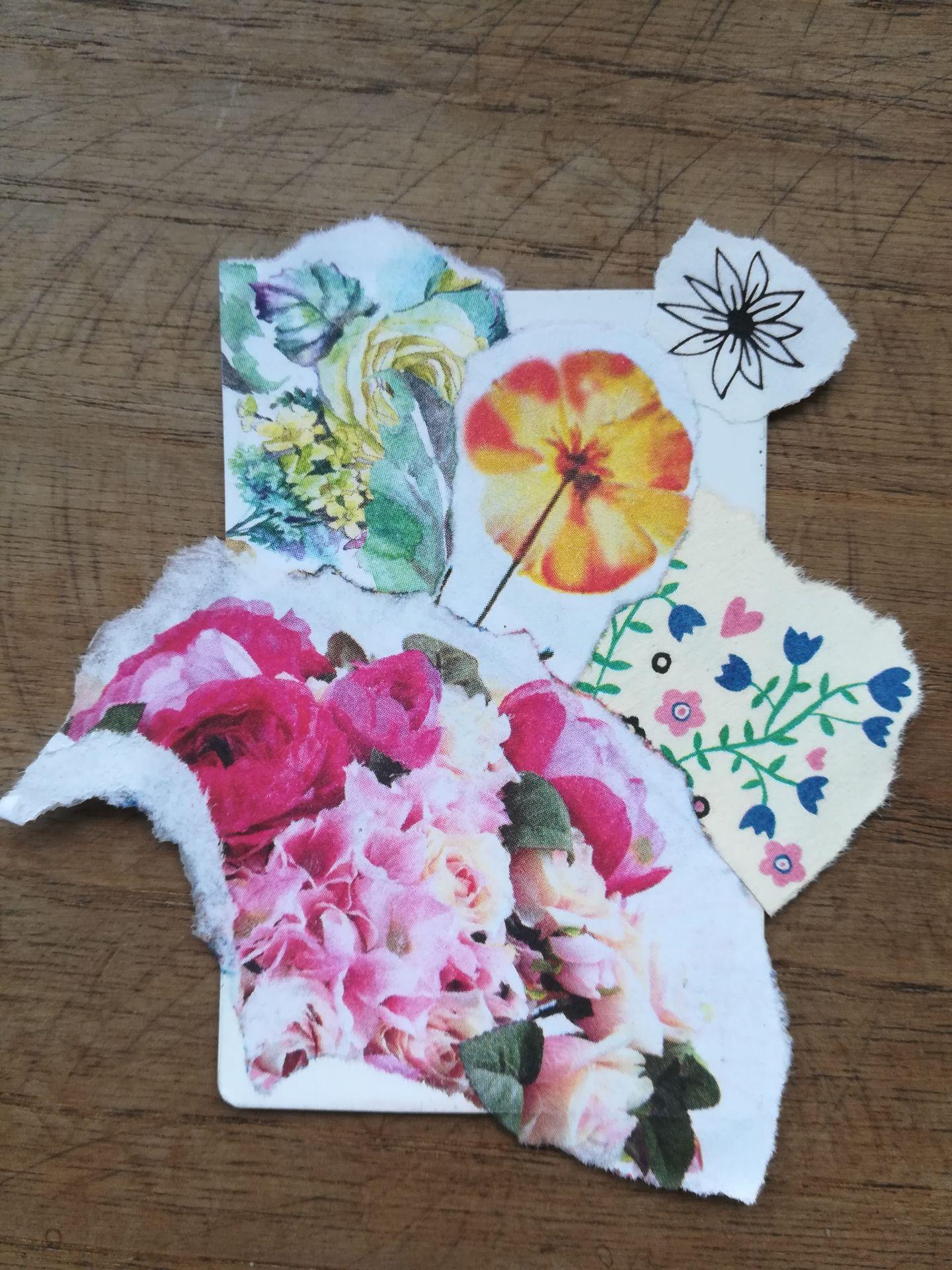 3.fleurs