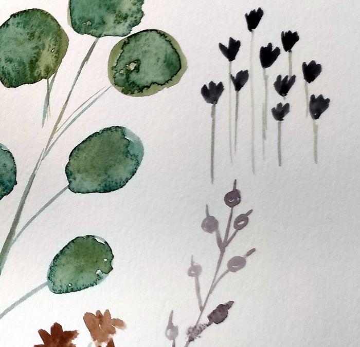Etudes botaniques